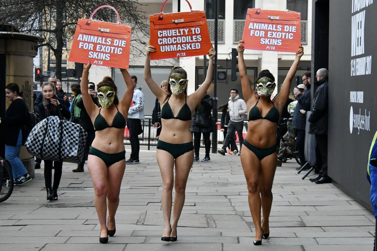 Organizacja PETA w Londynie
