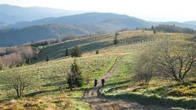 Szlak główny Beskidu Wyspowego liczy 320 km i przebiega przez 56 szczytów i 46 miejscowości