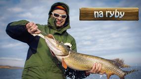 Na Ryby - w ten weekend łowimy w Amurze