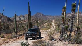 Jeepem Wranglerem przez północny Meksyk