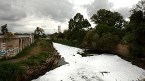 Rio Lerma - najbardziej śmiercionośna rzeka świata?