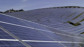 Zobacz jedną z największych elektrowni słonecznych w Europie