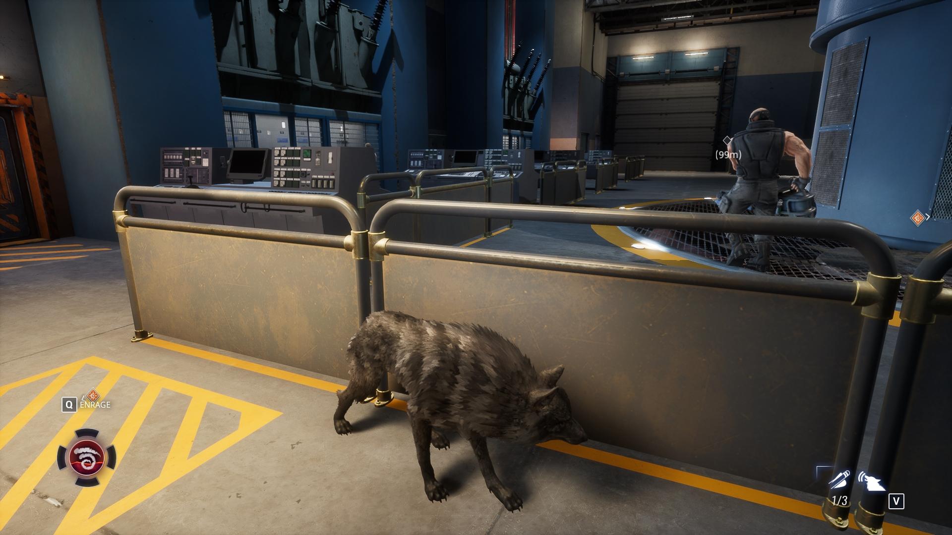 Vo forme vlka sa vieme ľahšie zakrádať.