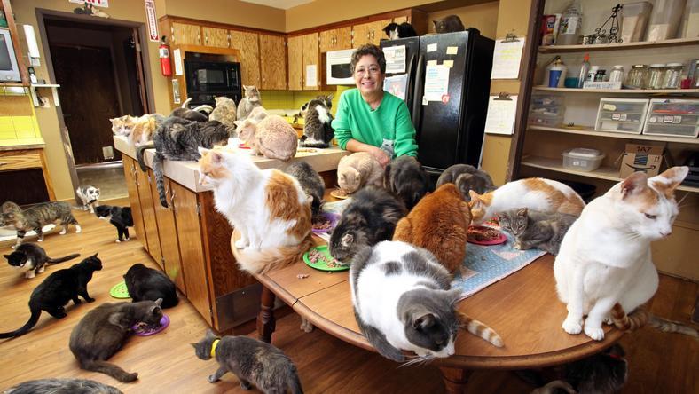 A nő azután szeretett bele a macskákba, hogy elvált a férjétől /Fotó: Northfoto