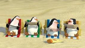 Śmieszne pingwiny