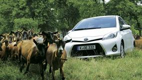 Solidny napęd, ale... - test długodystansowy Toyoty Yaris 1.5 Hybrid