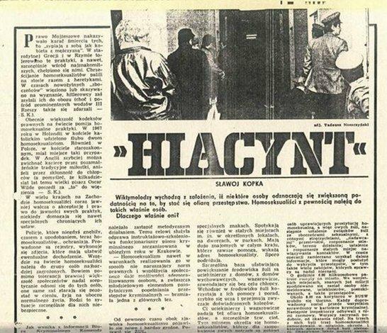 Hiacynt (fot. mat. wydawcy)