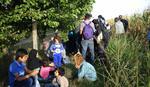 Do 16 sati u Preševo ušlo oko 6.000 osoba