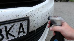 Jak z auta zmyć robale?