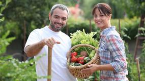 Jak stworzyć idealny ogródek? Praktyczne rady