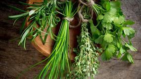 Lecznicze własciwości popularnych ziół: bazylia, oregano, lubczyk, koperek, natka pietruszki