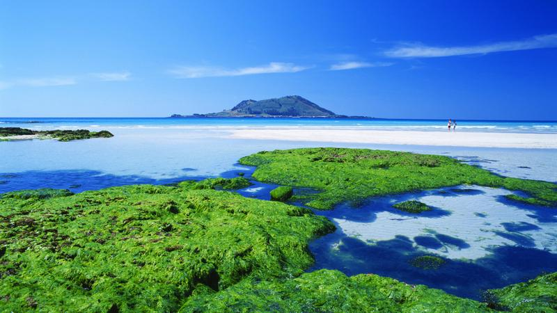 Wyspa Jeju W W Raju Podr E