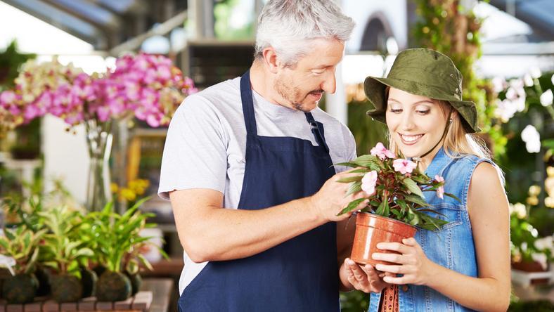Válasszunk növényt fény és árnyék szerint /Fotó: Shutterstock