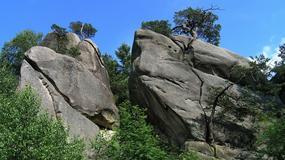Prządki - najczęściej odwiedzany rezerwat na Podkarpaciu
