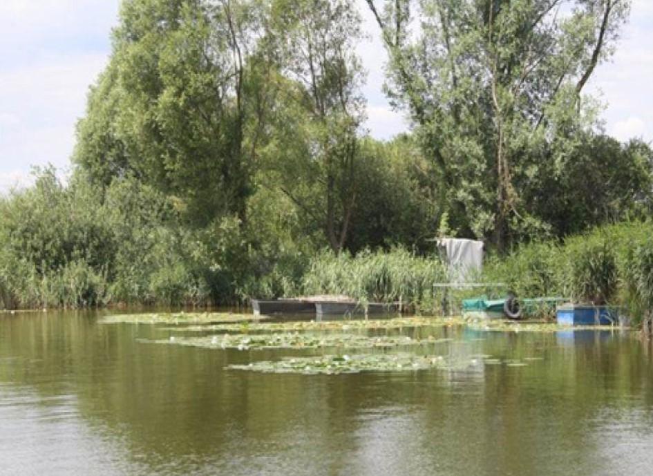 egyéni tulajdonosok a tó