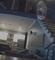 Kamera snimila lopova u kući, ali krađa nije najgora stvar koju je radio
