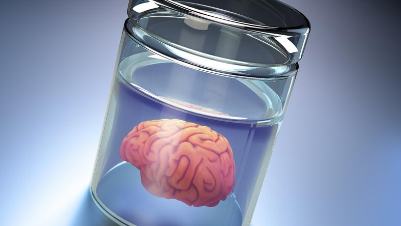 Brandi Chastain agyát egy szerv bankban tárolják majd halála után / Fotó: AFP