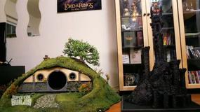 Zbudowali kuwetę dla kotów wzorowaną na norze hobbita