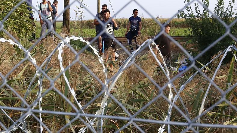 Ha sok menekült érkezik a magyar-román határra, akkor ott is megépülhet a kerítés / Fotó: Fuszek Gábor