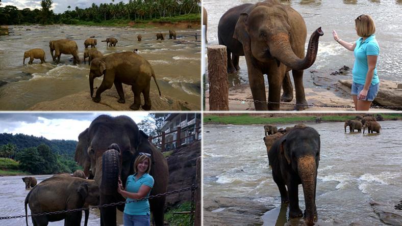 Az elefántárvaházban való látogatásom az utazásom csúcspontja volt / Fotók: Szabadfi Mónika