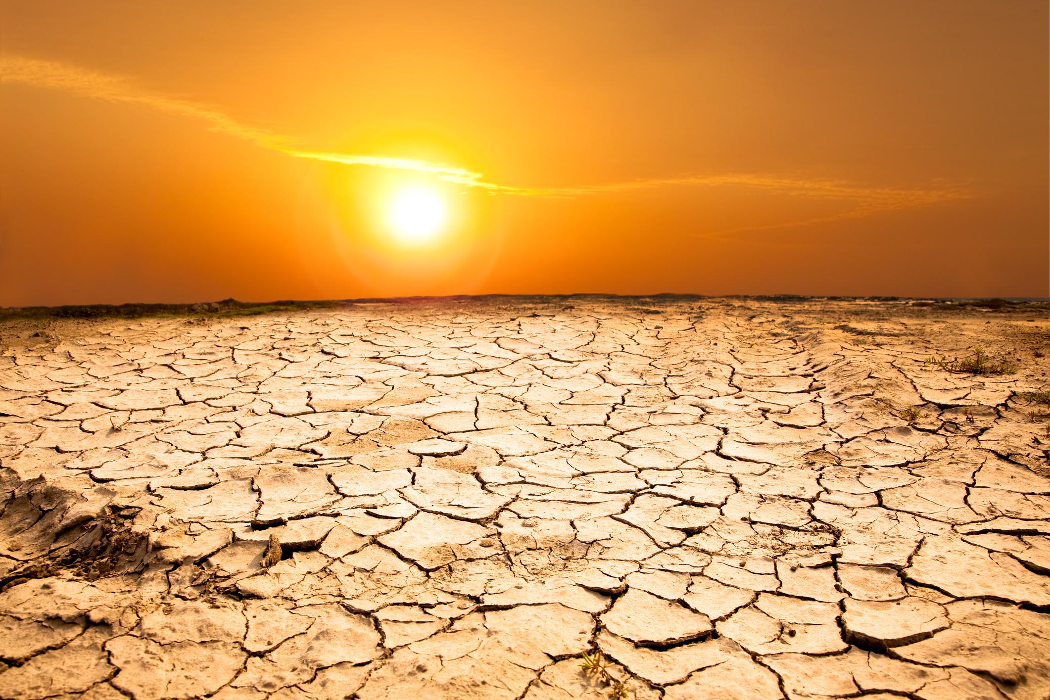 Các đợt nắng nóng sẽ không ngừng gia tăng vào cuối thế kỷ này. Ảnh: Tom Wang.