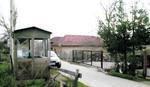 BLIC sa komšijama Mile Đinđić: Krckali smo orahe, pili čaj, pričali...