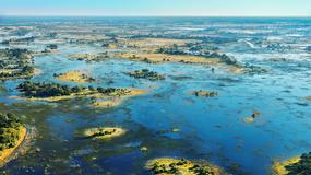 Niezwykłe królestwo zwierząt - delta Okavango