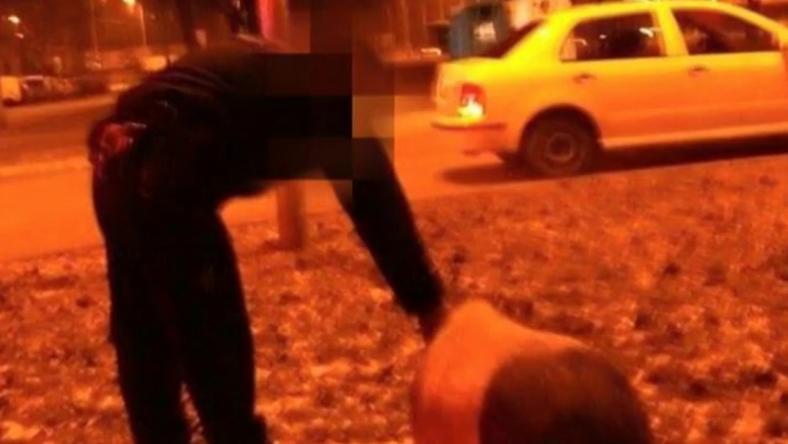 Ez a csüngő hasú malac szaladgált a városban /Fotó: TV2