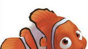 Nemo znalazł ponad 800 milionów