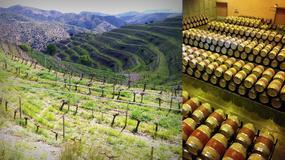 Hiszpania: śladem katalońskich winnic