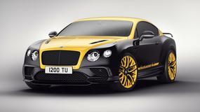 Bentley Continental 24 – najszybsza pszczoła w okolicy