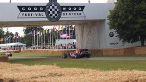 Bolidy u lorda – Goodwood Festival of Speed