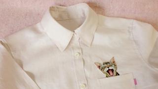 Urocze koszule z kotem w kieszeni