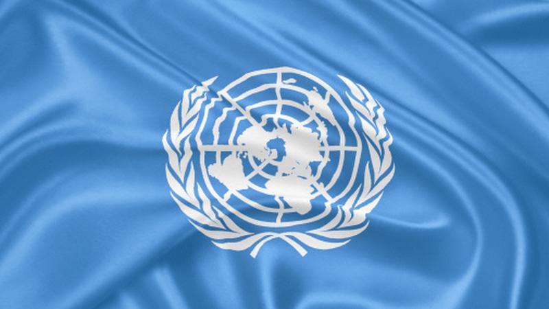 Flaga Organizacji Narodów Zjednoczonych