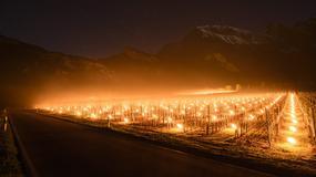 Niezwykły widok u podnóża Alp