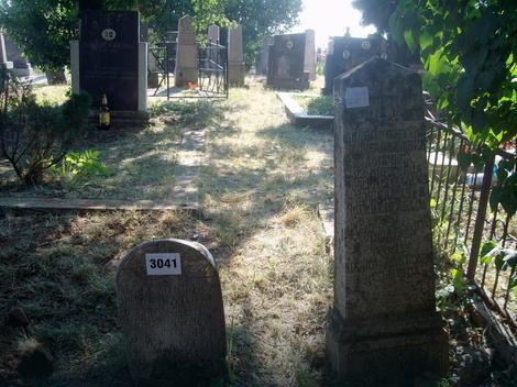 Spomenici na starom groblju u Vreocima