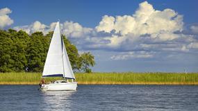 Wyspy na jeziorze Śniardwy opanowały gryzonie - myszy wchodzą też na jachty i żaglówki