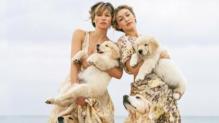 Pieskie życie mody: urocze szczeniaki w sesji Bruce'a Webera dla VOGUE