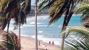 Brazylia, plaże Alagoas
