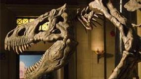 Prehistoryczne stwory ożyją po raz drugi