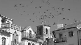 Portugalia - zimową porą