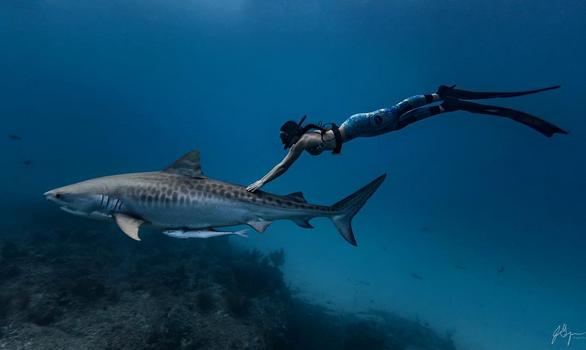 Podwodny świat Ray Ray