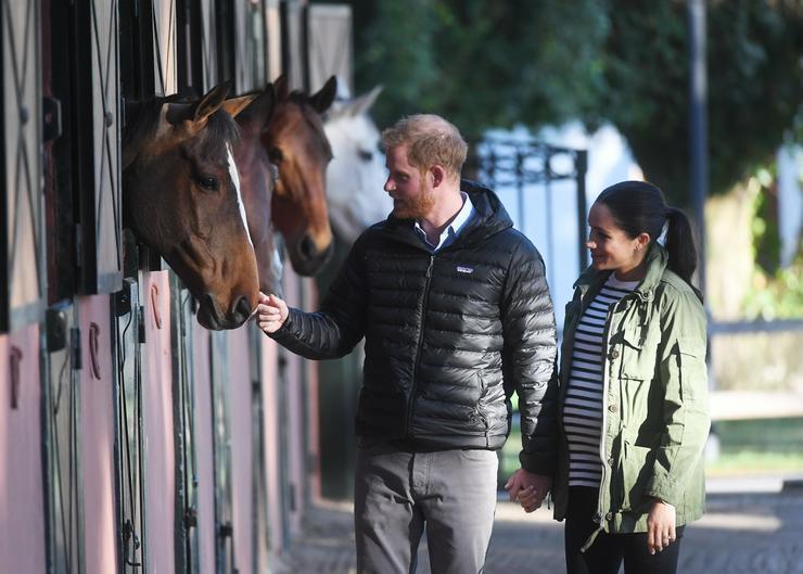 Meg is simogatták a lovakat /Fotó: MTI/EPA/Hannah McKay