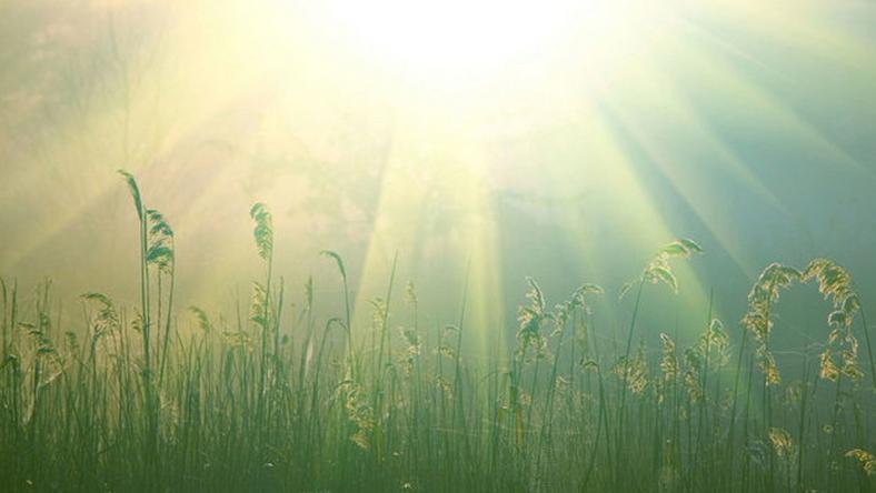 A szerdai idő már a tavasz jeleit mutatja / Fotó: Northfoto