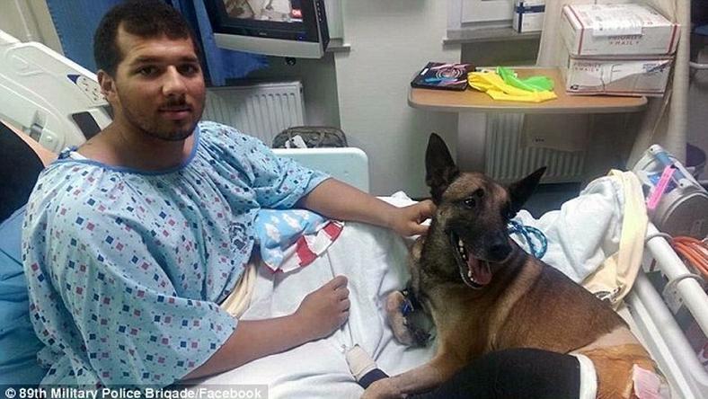 Rock gazdája együtt fekszenek a kórházban
