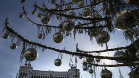 Rzymska choinka uschła i nie doczeka Bożego Narodzenia