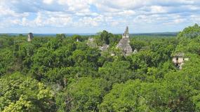 W poszukiwaniu prawdziwych Majów