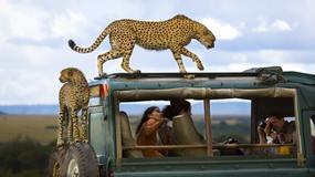 Najlepsze zdjęcia National Geographic Photography Contest 2013 - zwycięzcy