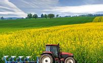 """""""Renty dla rolników"""". Rekompensata za niskie ceny"""
