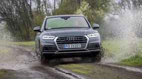 Audi Q5 2.0 TFSI - do turystyki i na co dzień